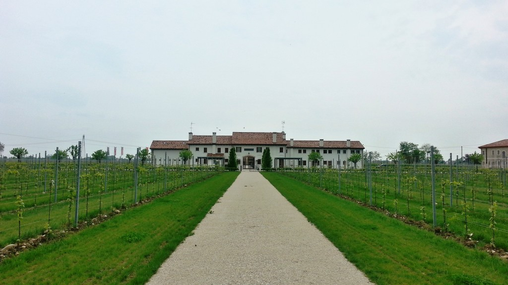 The main house at Giusti