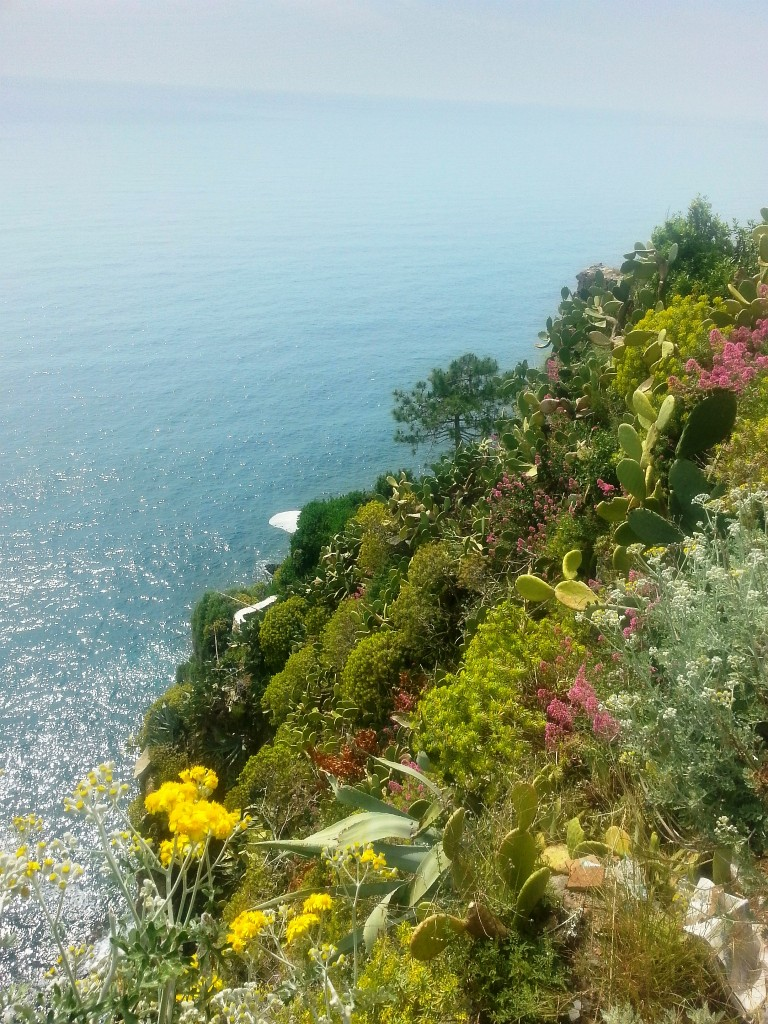 Hillsides bursting with flowers