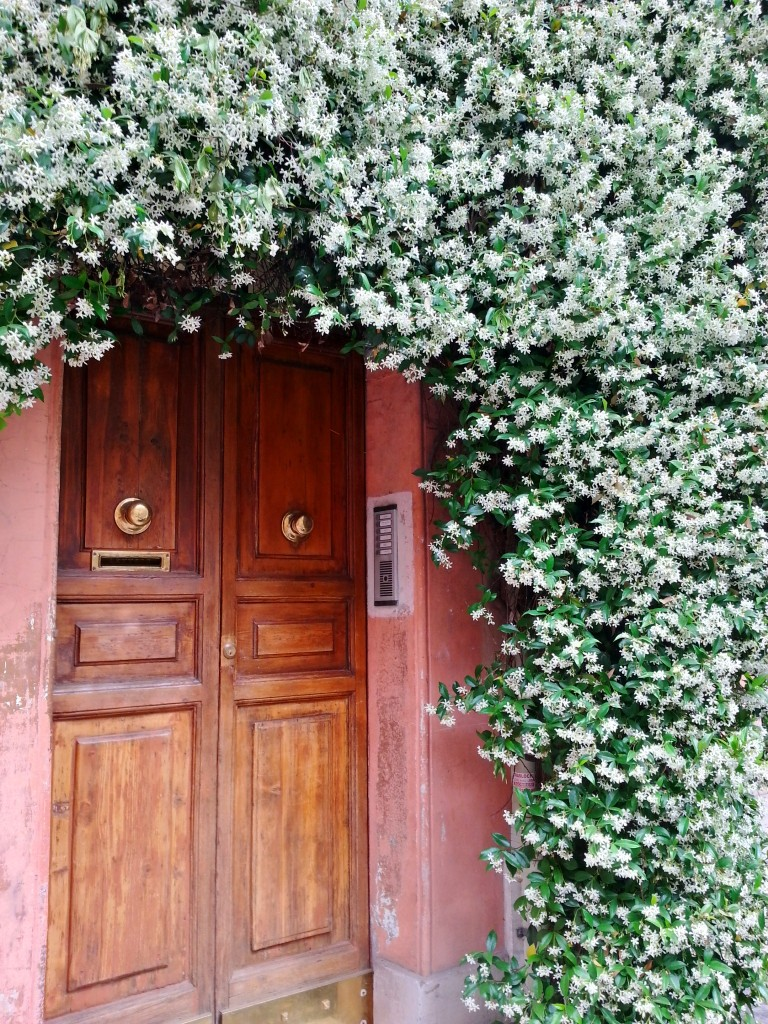 A curtain of jasmine in Monti