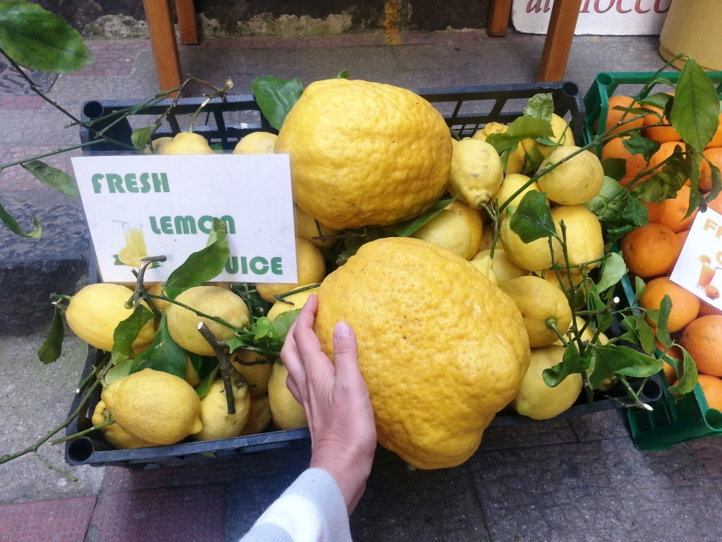 Those famous Amalfi lemons